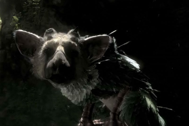 Where has The Last Guardian gone?