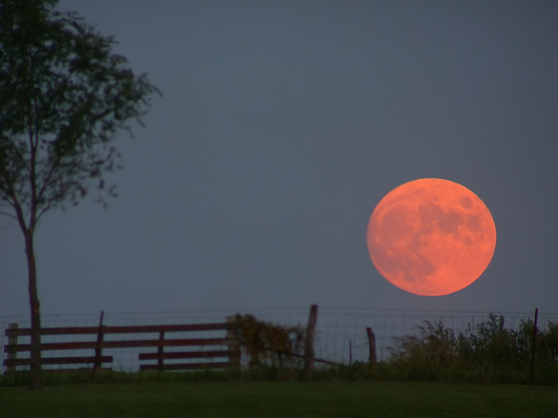 """""""Because I'm still in love with you, on this harvest moon."""""""