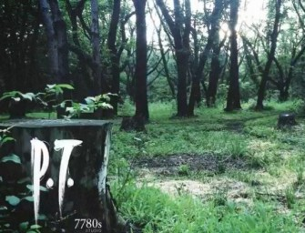 P.T. Is The Best Thing To Happen To Gaming In A Long Time