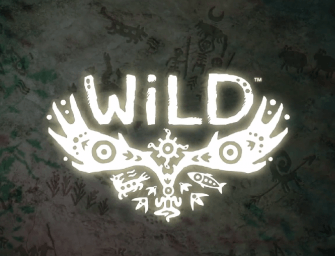 Why WiLD Has Me So Excited