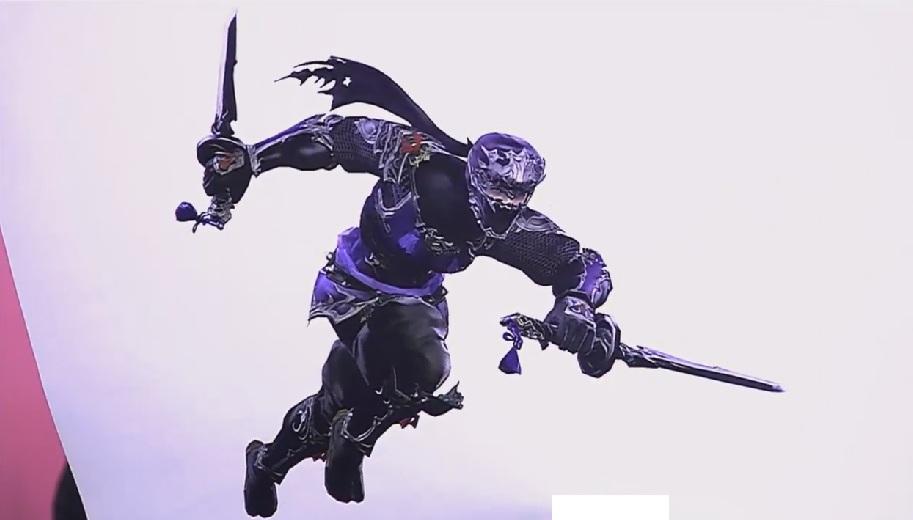 Ninja is the job class to Rogue and spams ninjutsu for both damage and buffs.