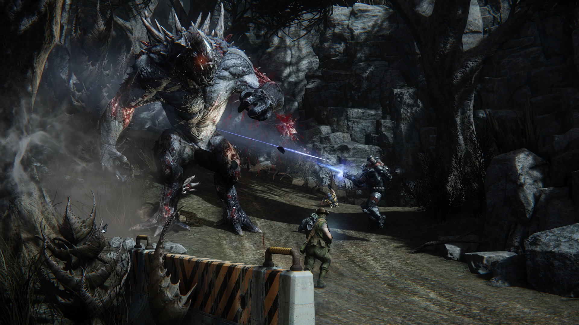 Evolve Review 3