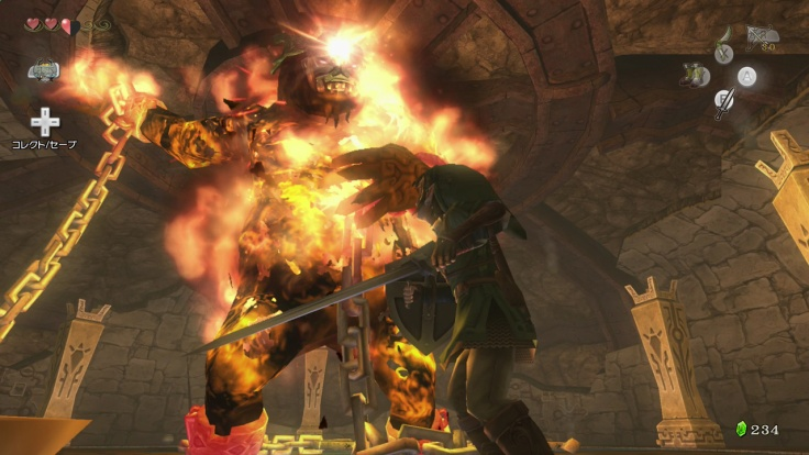 Twilight Princess HD Fyrus