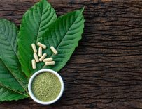 Kratom & the DEA: What You Need to Know Kratom Legality